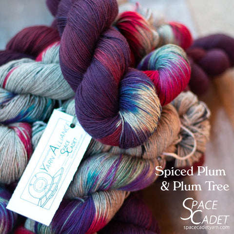 Spiced Plums (Yarn Alliance Exclusive Colourway, July 2020)