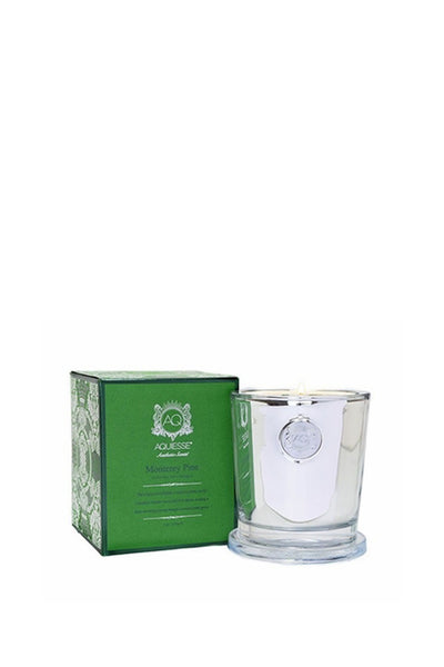 MONTEREY PINE HOLIDAY CANDLE