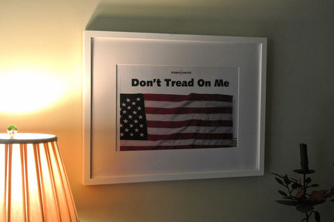Don't Tread on Me Graphic Wall Decor