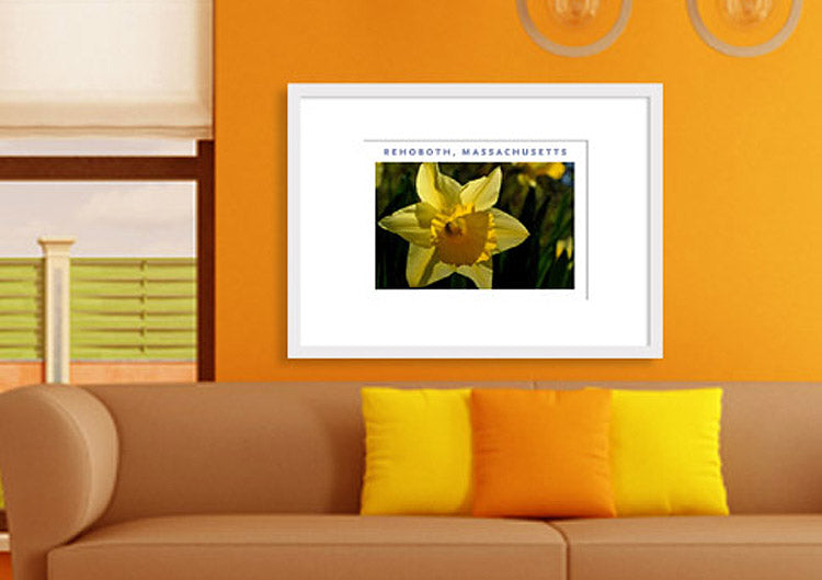Massachusetts photographic wall art by George Delany