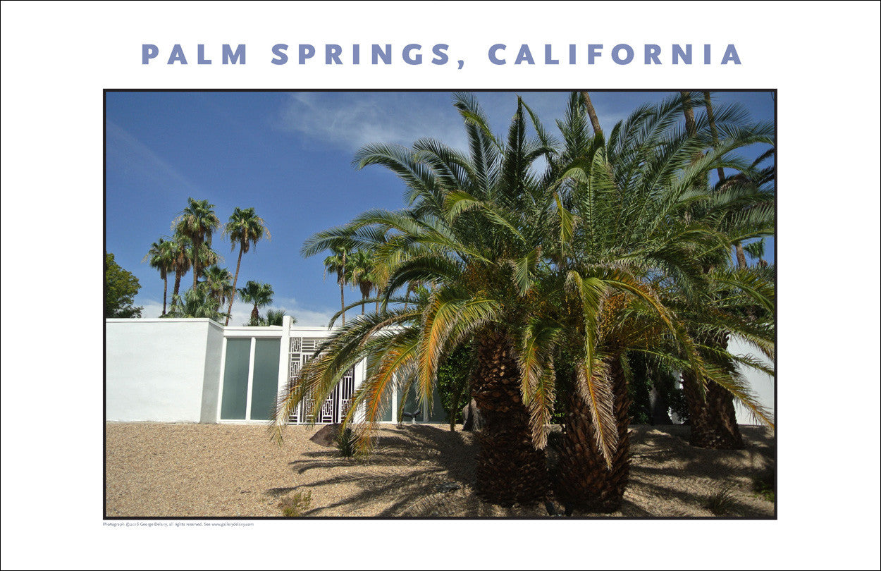 Splashy Abode... Palm Springs, CA Photo Wall Art #1014