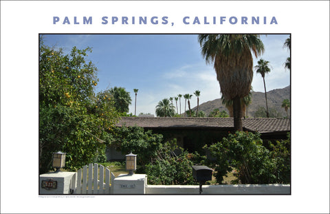Typical Flora, Scene, House Tour of Palm Springs, CA Photo Wall Art #1016