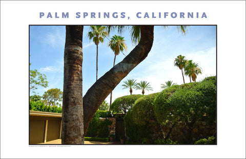 Inviting Gate, House Tour of Palm Springs, CA Photo Wall Art #1017