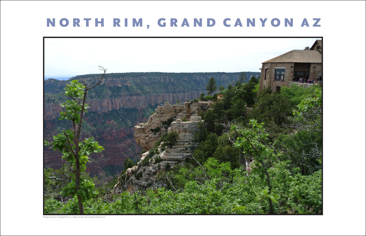 North Rim, Grand Canyon, Arizona Photo Wall Art #1072