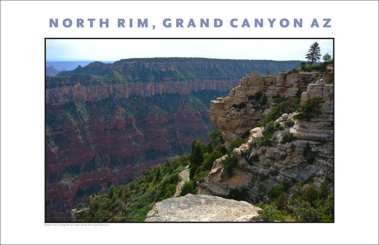 North Rim, Grand Canyon, Arizona Photo Wall Art #1079