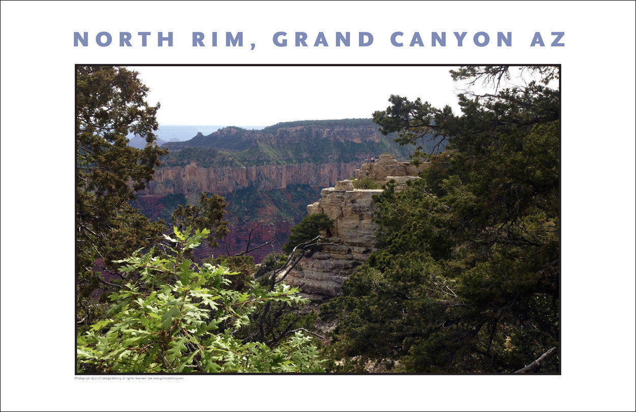 North Rim, Grand Canyon, Arizona Photo Wall Art #1086