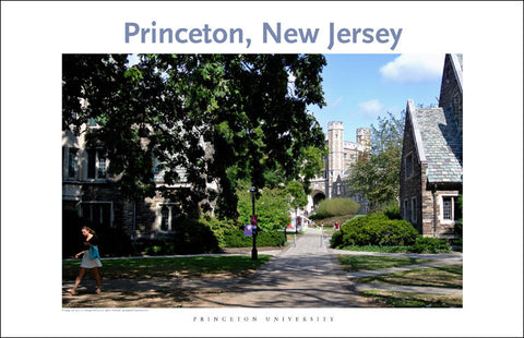 Princeton University 108 Digital Wall Art