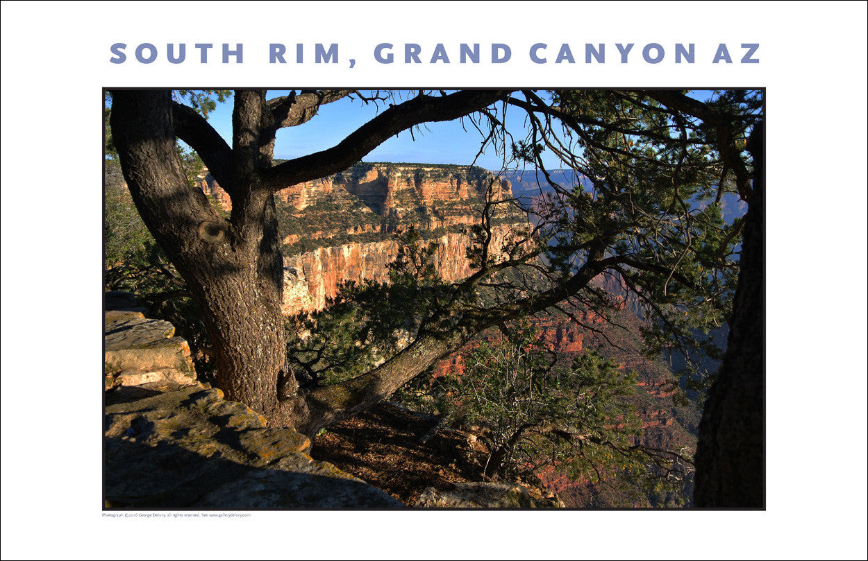 South Rim, Grand Canyon, Arizona Photo Wall Art #1103
