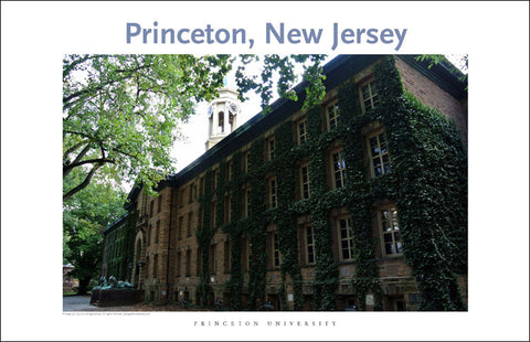 Princeton University 110 Digital Wall Art