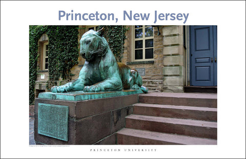 Princeton Tiger 112 Digital Wall Art