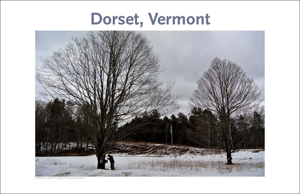 Dorset, Vermont, Photo Poster Collection #12