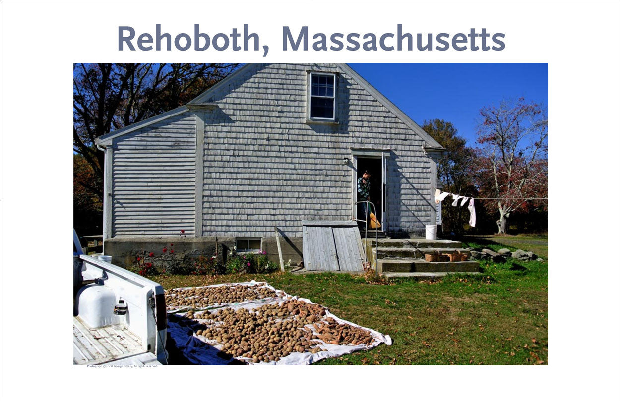 Wall Art, Rehoboth, MA Potatoes for Winter Digital Photo #266