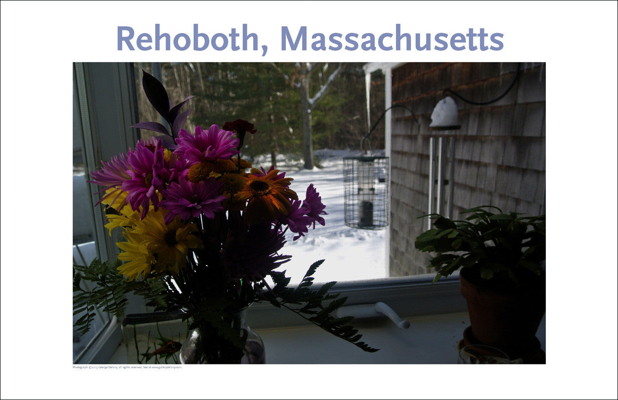 Wall Art, Rehoboth, MA Flowers in Winter Digital Photo #366