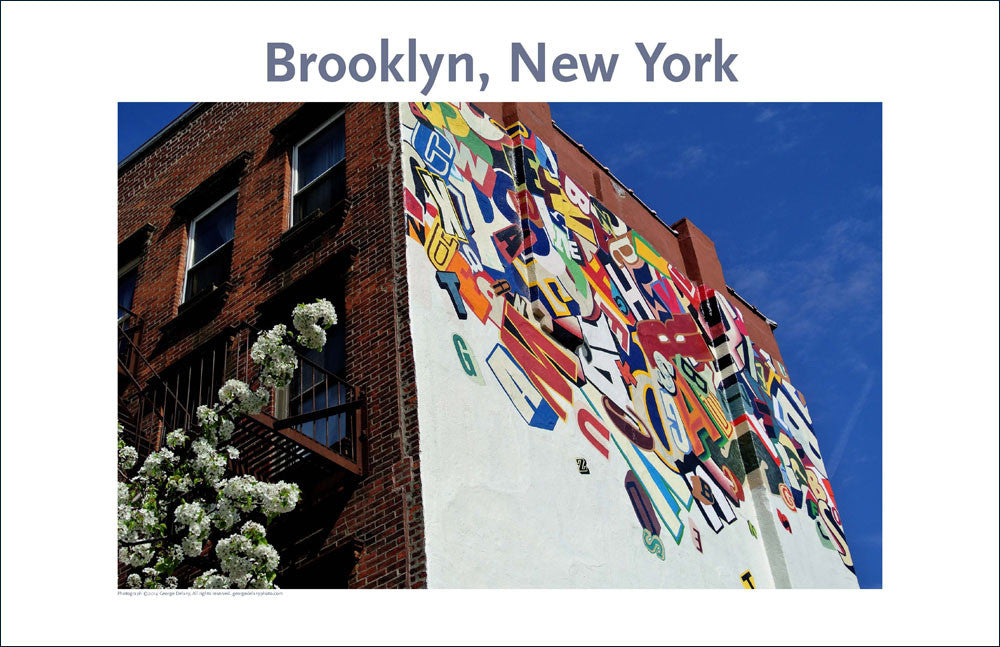 Brooklyn, NY, Place Photo Poster Collection #5