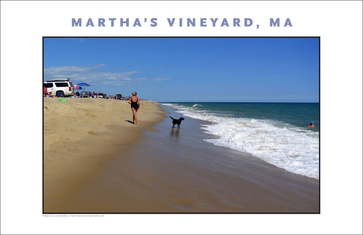 Katama Beach, Martha's Vineyard, MA Wall Decor #794