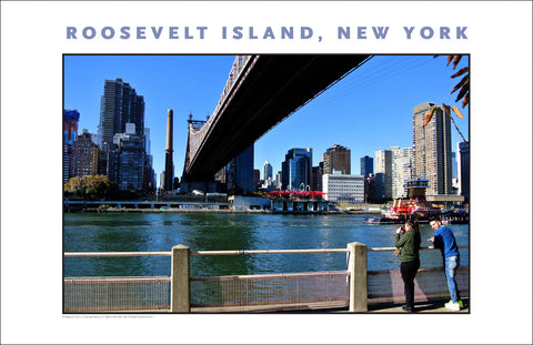 Roosevelt Island, View of New York City Photo Art #874
