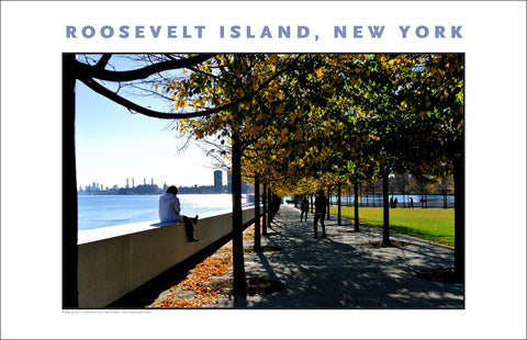 Fall View at Four Freedoms Memorial Park New York City #886