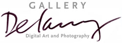 Gallery Delany