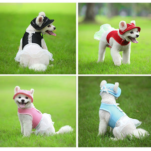 Pet Sun Visor Caps With Ear Holes & Matching Dress, Spandex, Various Color & Size Sets
