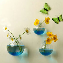 Load image into Gallery viewer, Flower Pot Wall Hanging Glass Ball Vase, Hydroponic plant container, Sizes 10/12/15cm, Clear Glass, 1 pc