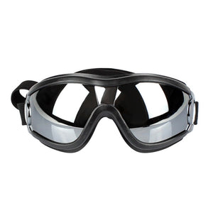 Fashion Protective Eye Sunglasses/Goggles. Windproof, Medium/Large, Black, 1pc