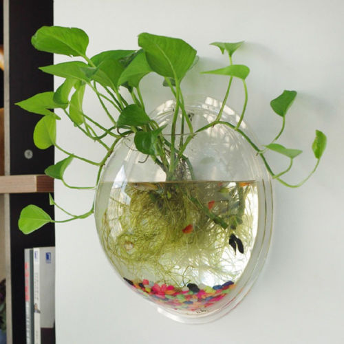 Flower Pot Wall Hanging Glass Ball Vase, Hydroponic plant container, Sizes 10/12/16cm, Clear Glass, 1 pc