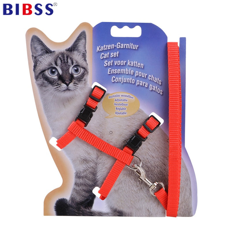 Nylon Cat Harness & Leash Set, Breakaway, Adjustable Traction & Fit, 5 Colors