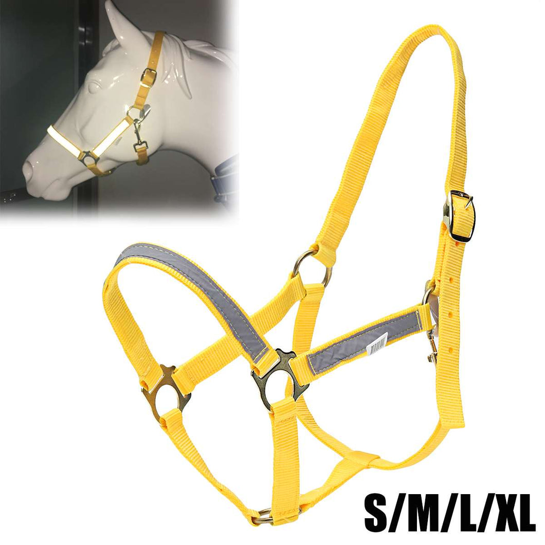 Horse Halter with Light Reflective Tape for High Visibility, Fluorescent Yellow, S/M/L/XL