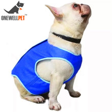 Load image into Gallery viewer, Pet Cooling Dog Vest, Blue, XS To L Sizes