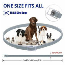 Load image into Gallery viewer, Adjustable Dogs or Cats Flea & Tick Collar, Quick Release, 8 Months Protection, 1 pc