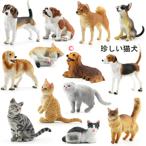 Japanese Genuine Pet Model Figure, PVC, 28 Various Characters, 1pc