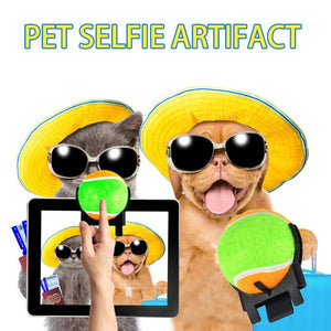 Interesting Tennis Ball Holder for Camera Pet Selfie Photos, Green