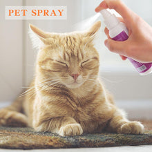 Load image into Gallery viewer, Itch Relief Body Spray for Flea, Tick, Mist, Lice, High Quality Fast Delivery, 1pc