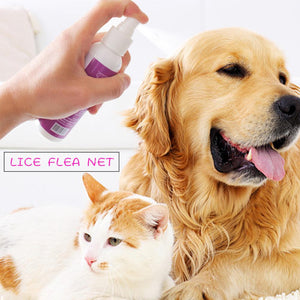 Itch Relief Body Spray for Flea, Tick, Mist, Lice, High Quality Fast Delivery, 1pc
