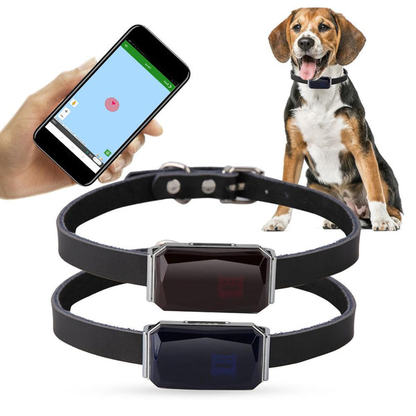 GPS Practical Anti-Lost Waterproof Tracer - Three Buddies Healthy Dog Treats