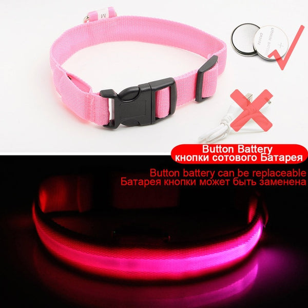 USB Charging Led Dog Collar - Three Buddies Healthy Dog Treats