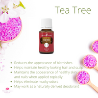 Oil Of The Week: Tea Tree (Week 2)