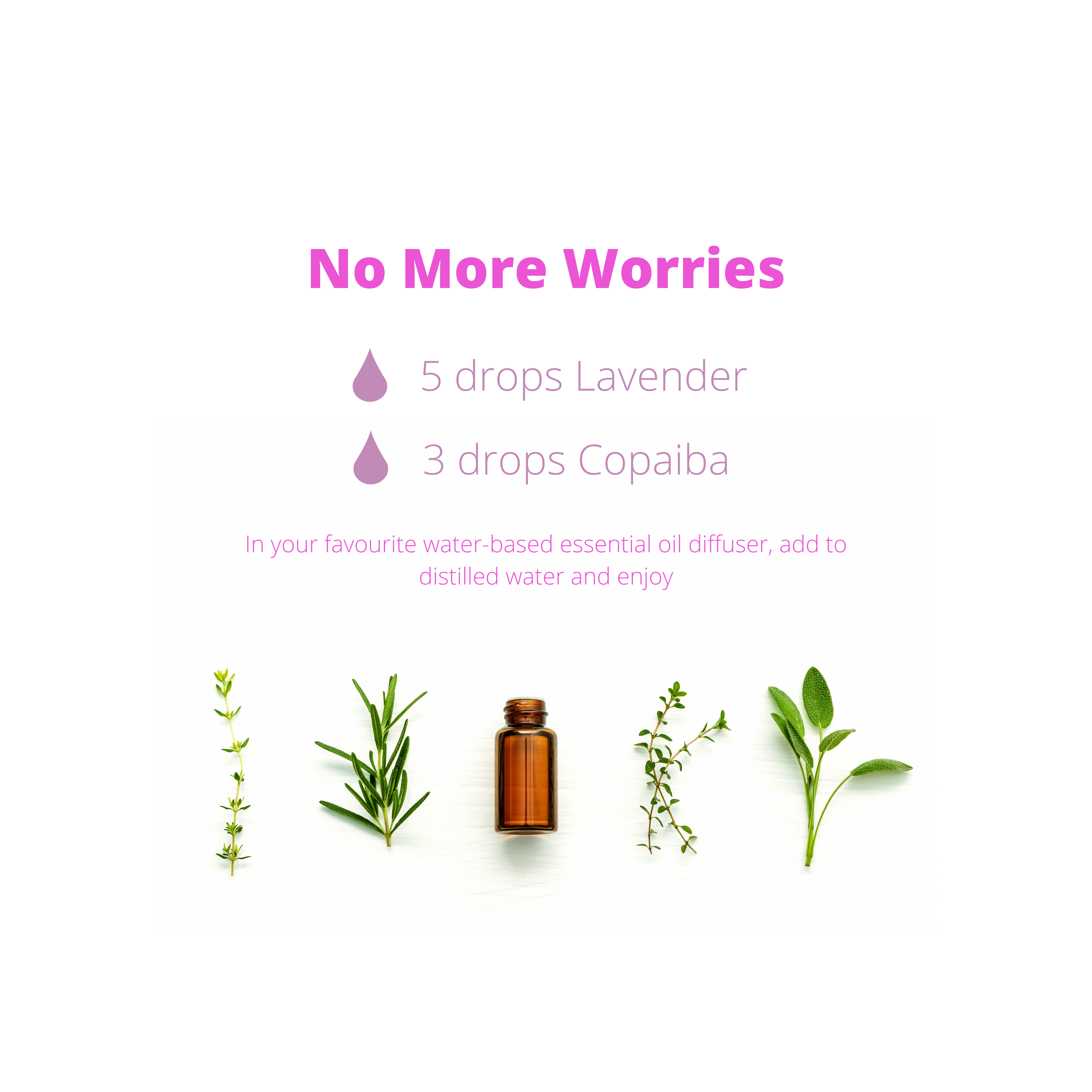 No More Worries Diffuser Blend