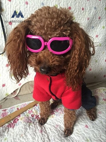 Enjoying Dog Goggles - Small Sunglasses Waterproof Windproof Uv Protection For Doggy Puppy Cat Black