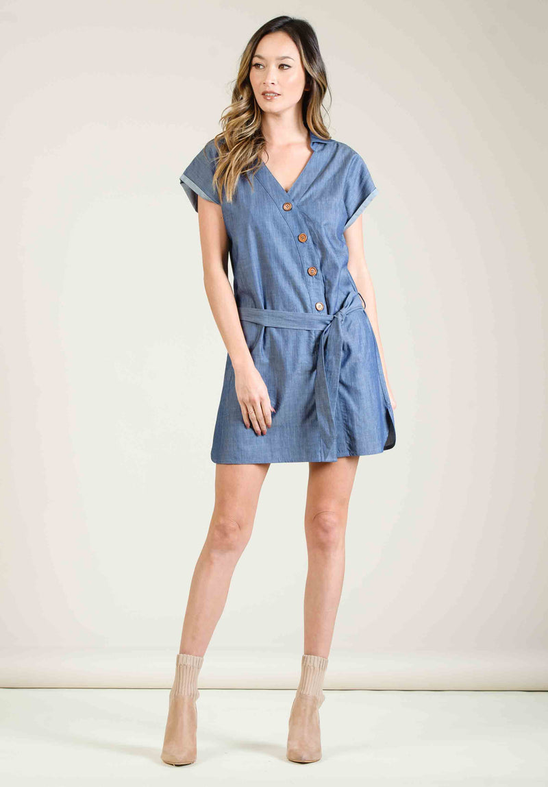 GIA BUTTON DOWN MINI DRESS | DENIM