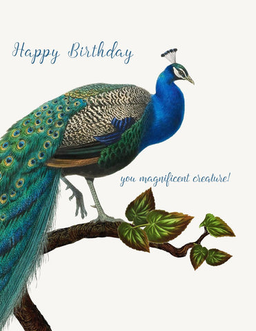Happy Birthday You Magnificent Creature! Glitter Greeting Card