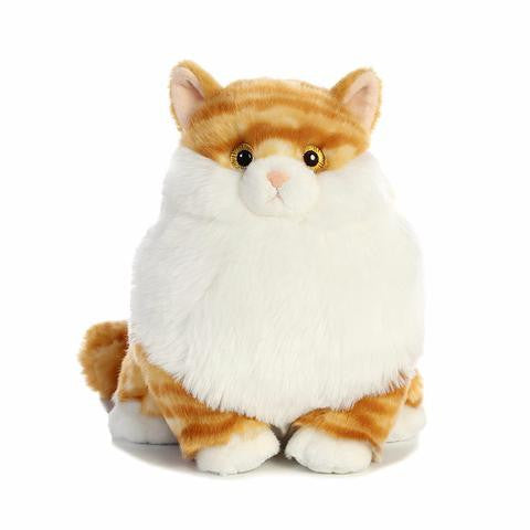 Tabby Cat - Butterball