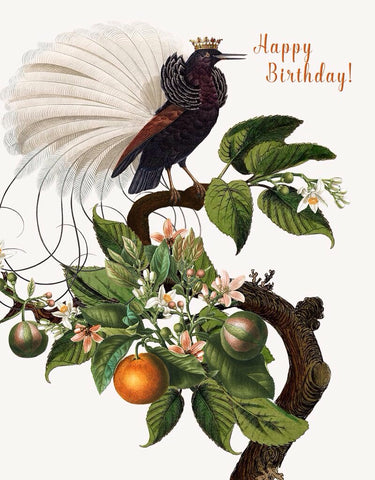 Happy Birthday (Bird of Paradise) Greeting Card