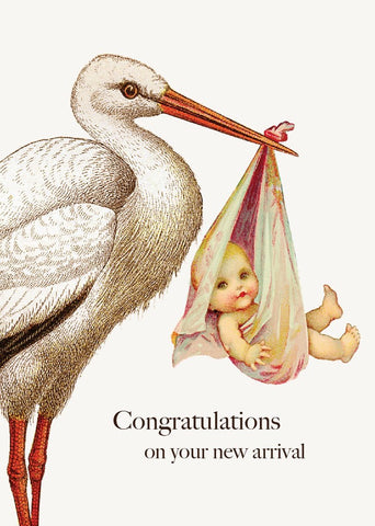 Congratulations, If Only It Were That Easy - Stork (small)