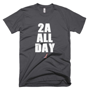 Charcoal Colored T-Shirt With 2A ALL DAY Design