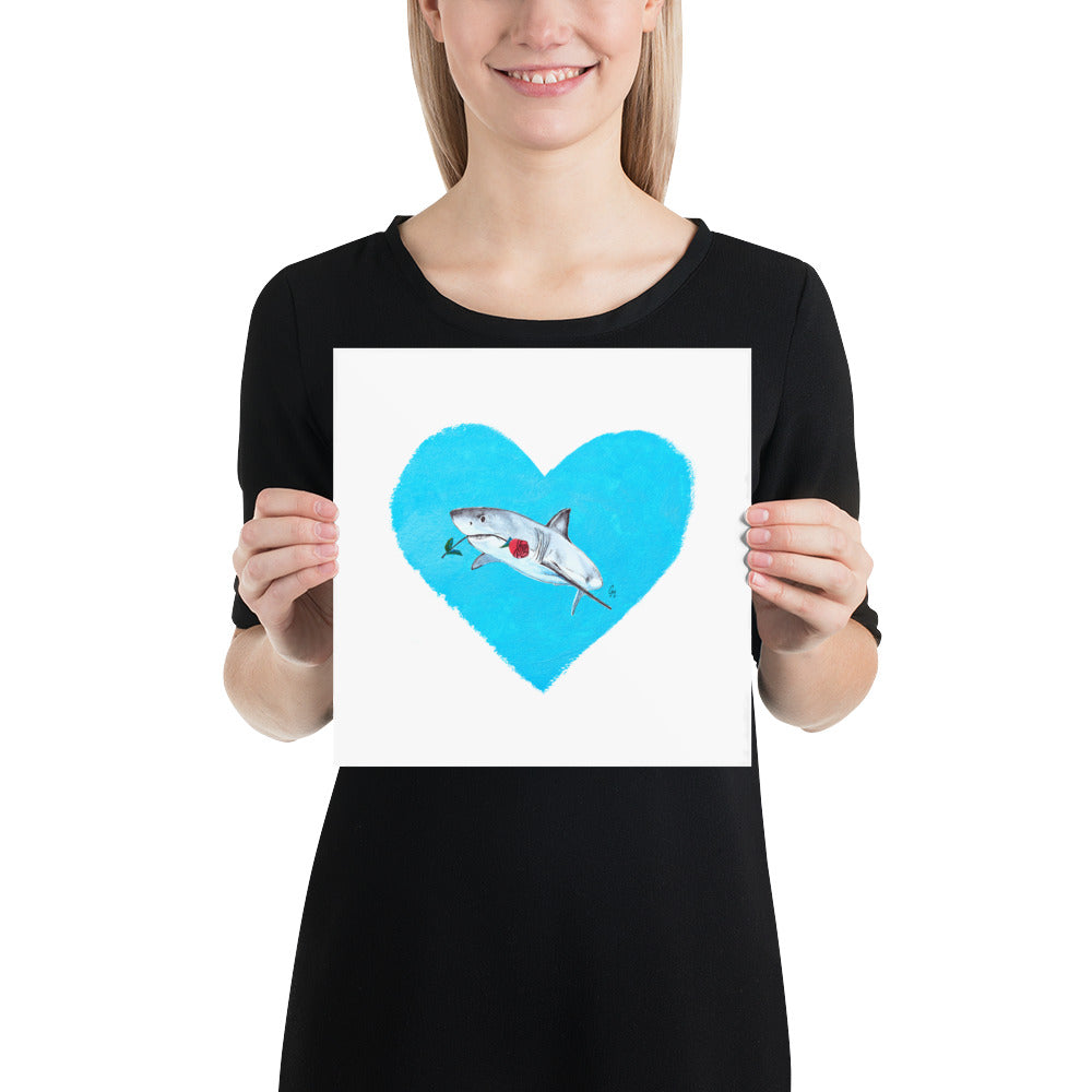 Looking For Love Shark Print