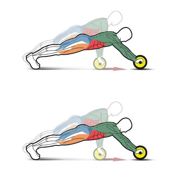 Abdominal Training Wheels