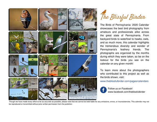 The Birds of Pennsylvania: 2020 Calendar