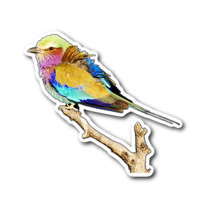 Lilac-breasted Roller Sticker