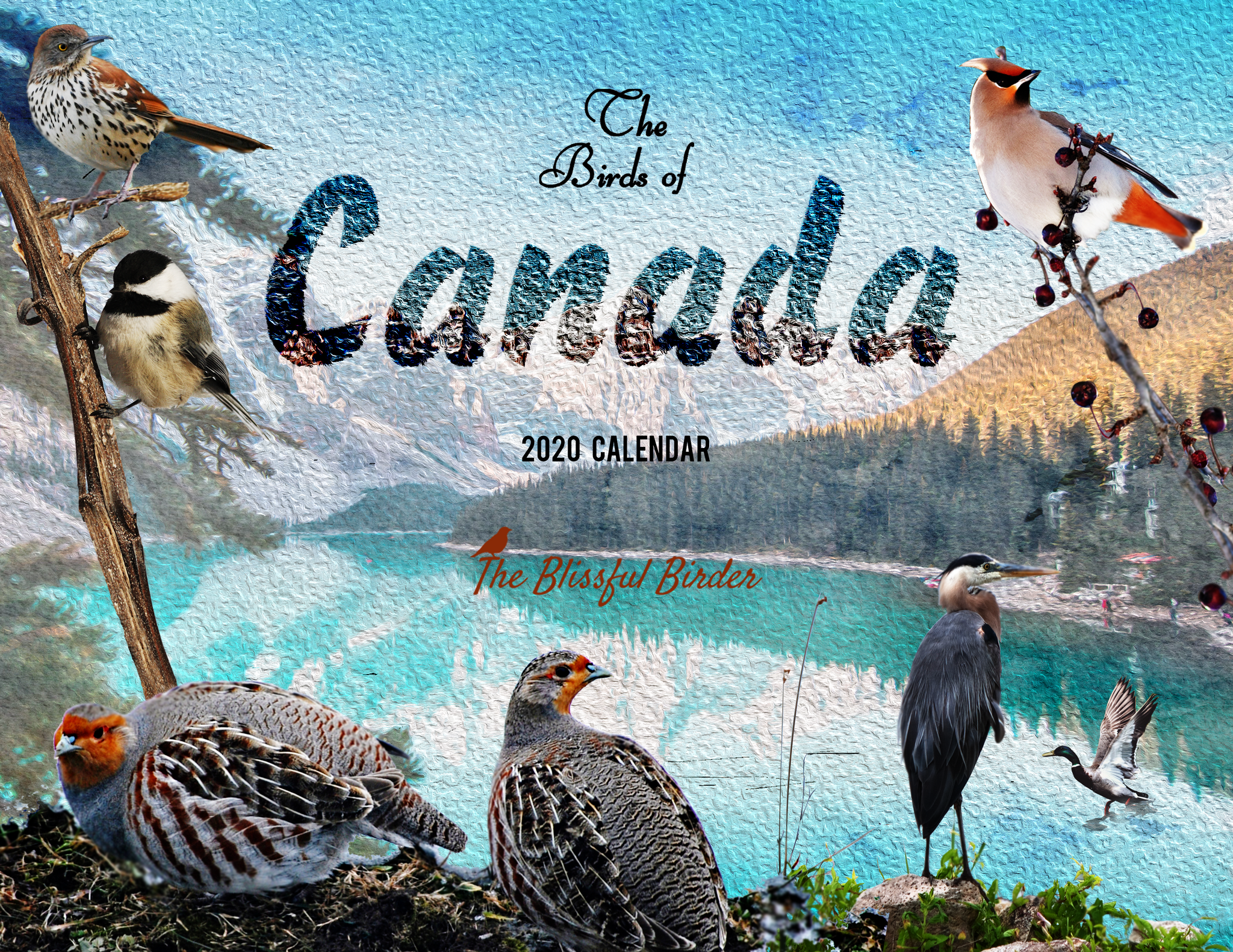 The Birds of Canada: 2020 Calendar
